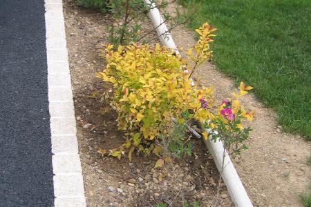 faire une dalle pour abri de jardin